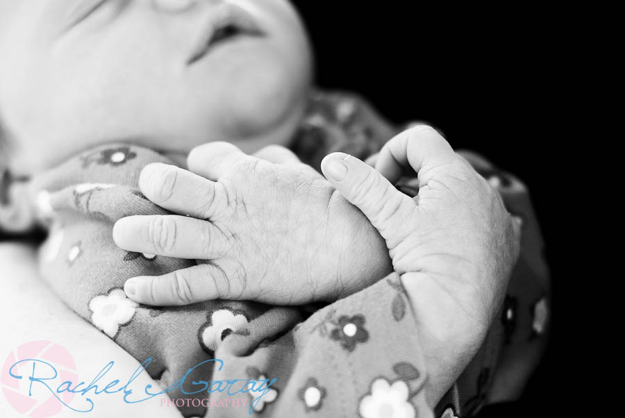 Newborn portraits photography taken in Rockville MD