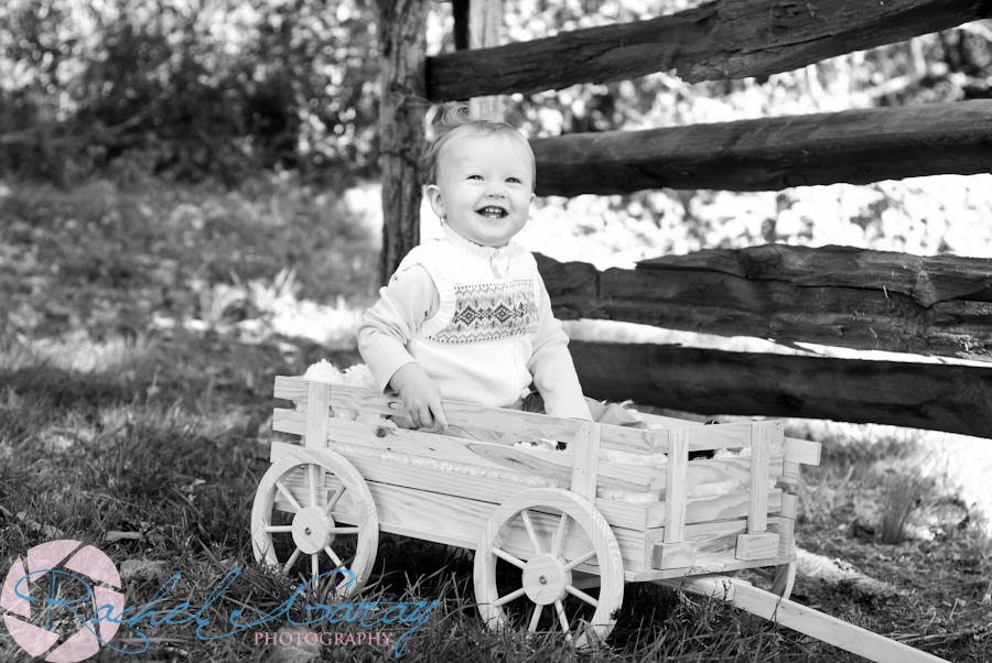 Toddler portraits photography near Rockville MD