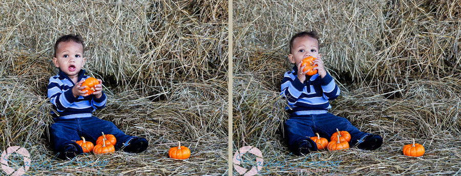Fall outdoor pictures of children in Rockville MD