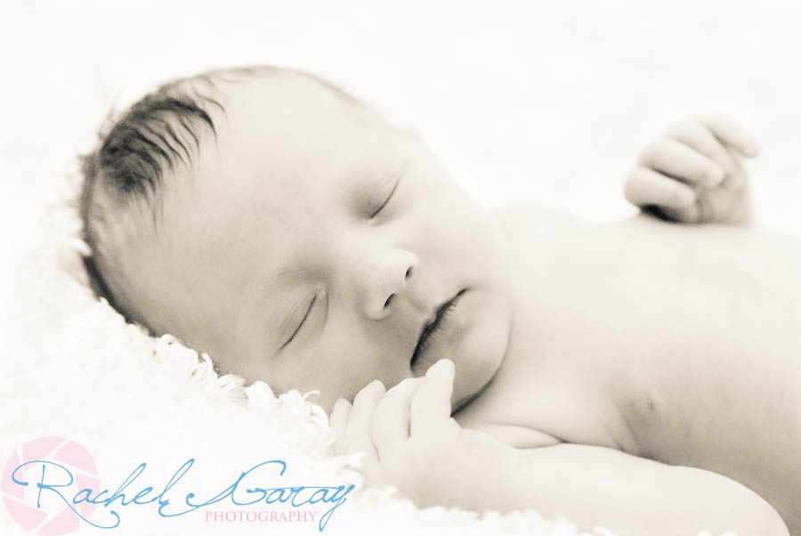 Newborn baby photos Rockville MD