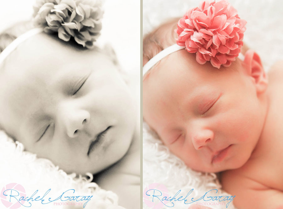Newborn photography with Baby B!