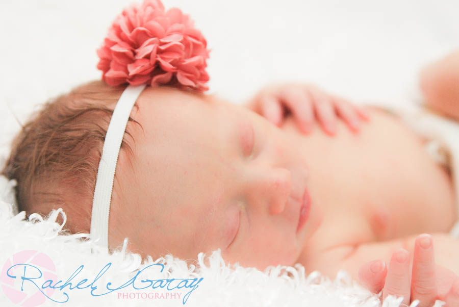 Newborn portraits featuring Baby B!